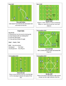 Gaelic Football Punt